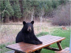 Je reste dubitatif après ce match. Et puis j'attends mon repas !